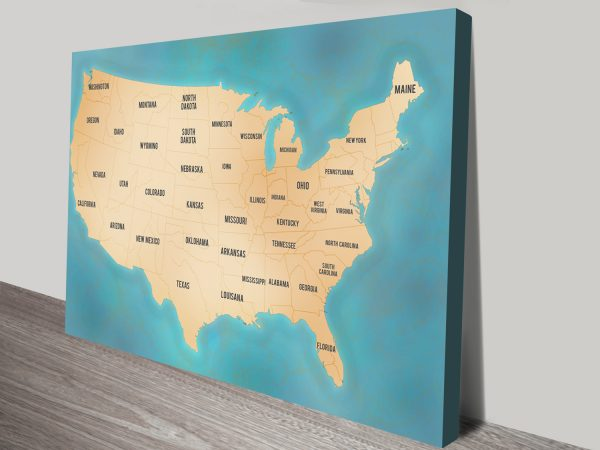 Personalised Push Pin Map USA Canvas Print