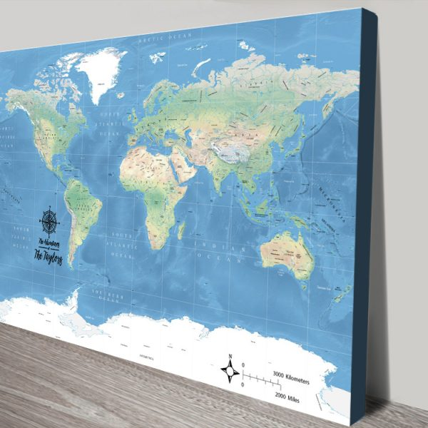 Miller Physical World Push Pin Map